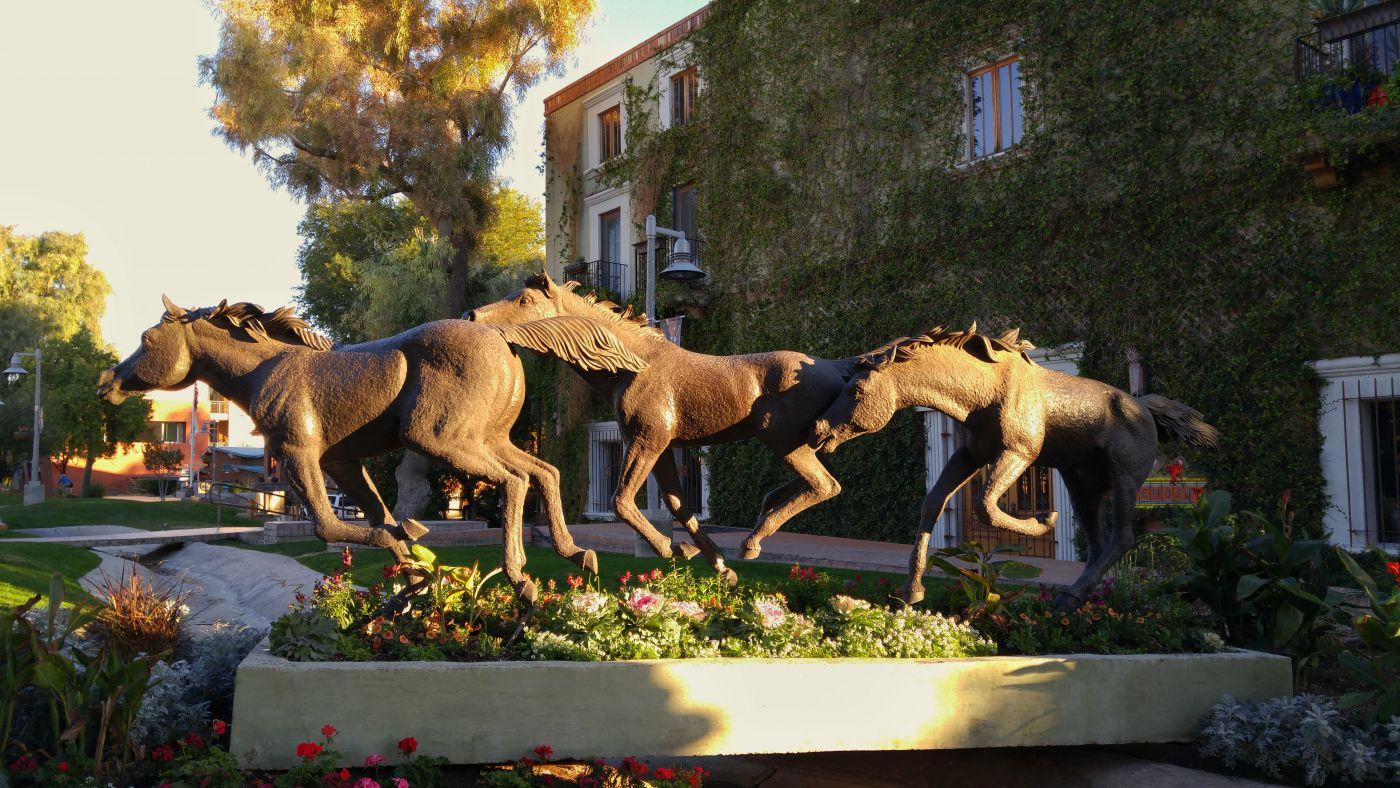 bronze horses Old Town Scottsdale