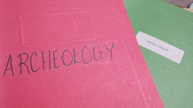"Apparently, the variation on the spelling of ""archaeology"" was acceptable in eighth grade General Business. Perhaps that was a determining factor in my not becoming an archaeologist."