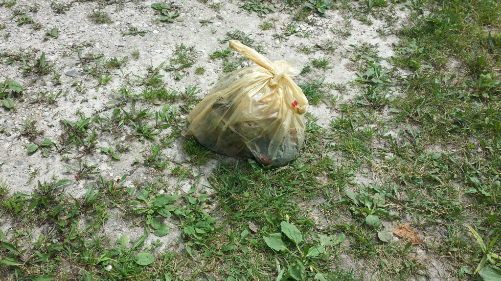 Our Weekly Trash Bag. Still Looking for Alternatives to the Bag Itself for Biodegradable Purposes.