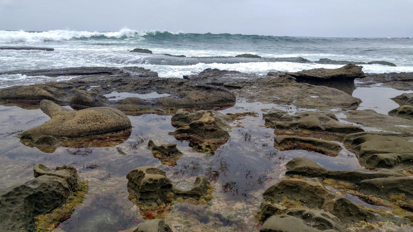 la jolla tide pool waves