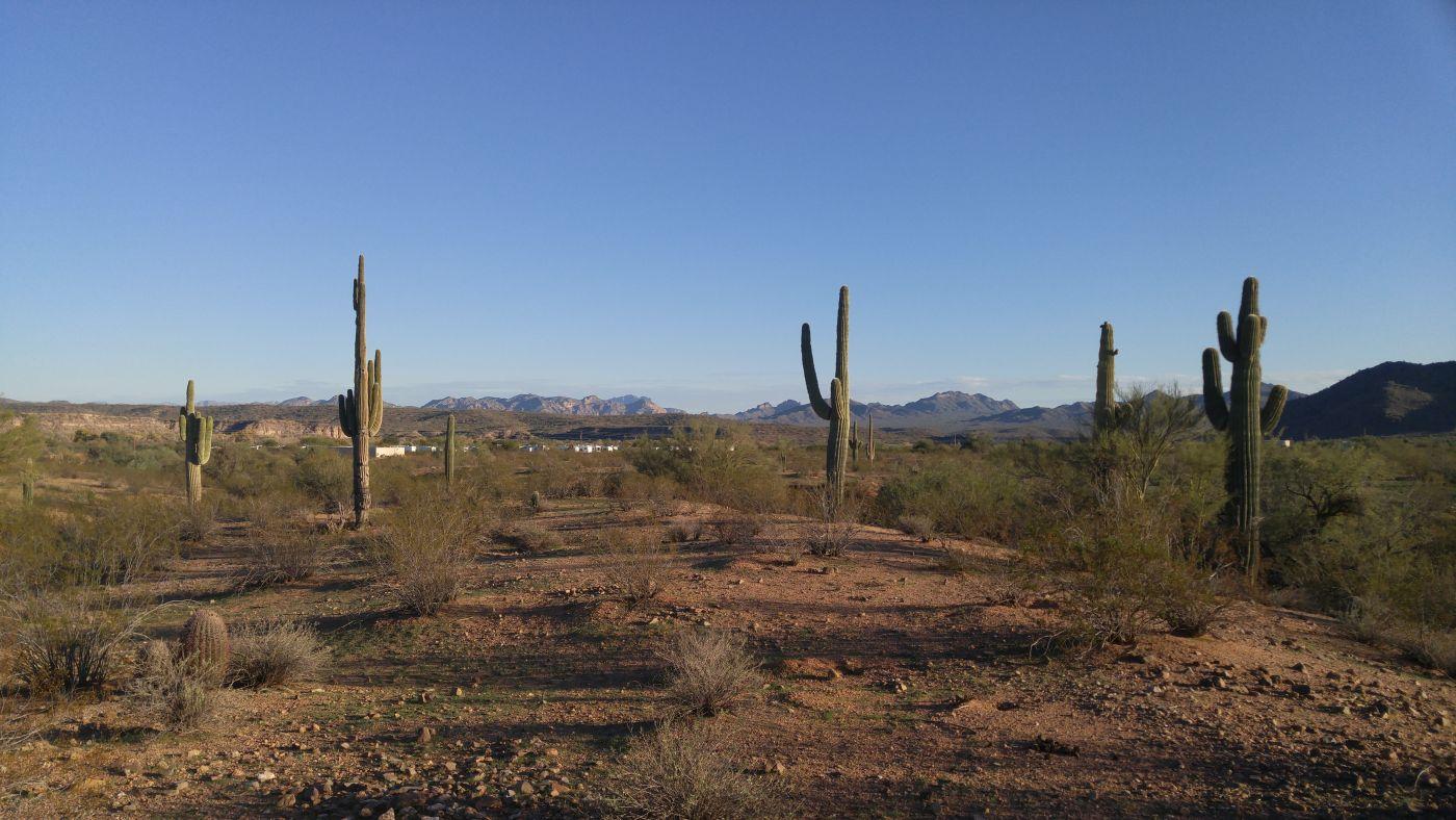 Fort McDowell desert